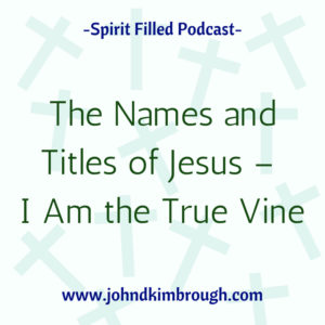 The Names and Titles of Jesus -I am the true vine