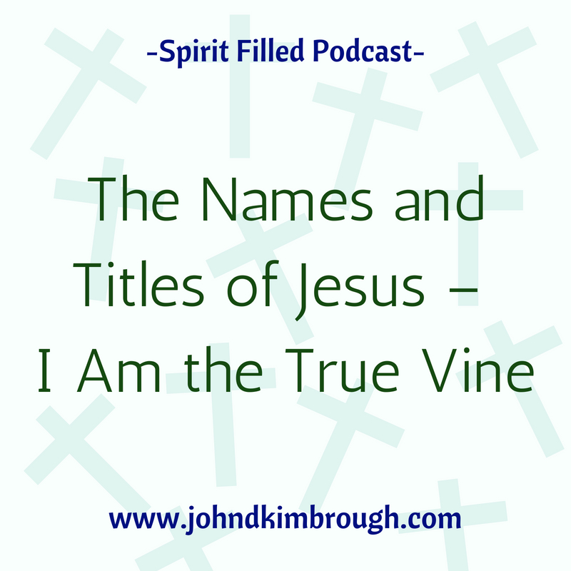 The Names and Titles of Jesus –  I Am the True Vine Episode 99